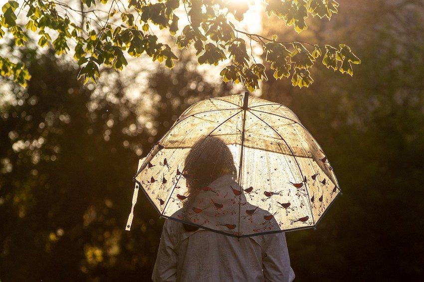 umbrella weave